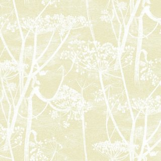 Cow Parsley / 95/9053 / Contemporary Restyled / Cole&Son
