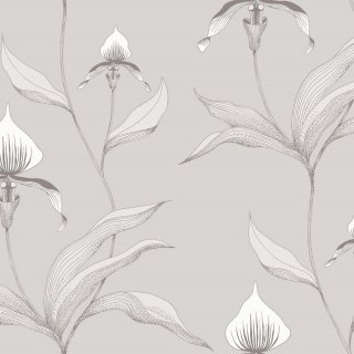 Orchid / 95/10055 / Contemporary Restyled / Cole&Son