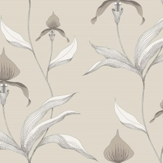 Orchid / 95/10058 / Contemporary Restyled / Cole&Son