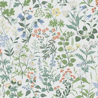 Flora / 5475 / Jubileum / Borastapeter