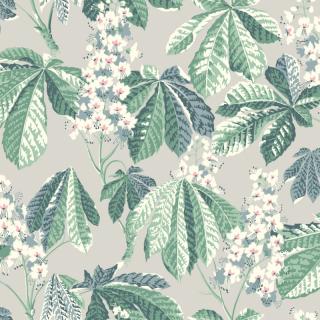 Chestnut Blossom / 7202 / In Bloom / Borastapeter