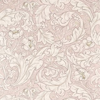Pure Bachelors Button / 216553 / Pure Morris North Wallpapers / Morris&Co.