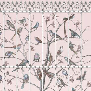 Uccelli / 114/11022 / Fornasetti2018 / Cole&Son