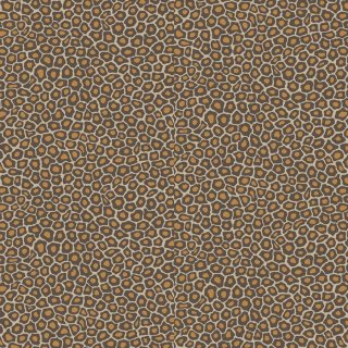 Senzo Spot / 109/6027 / The Ardmore Collection / Cole&Son