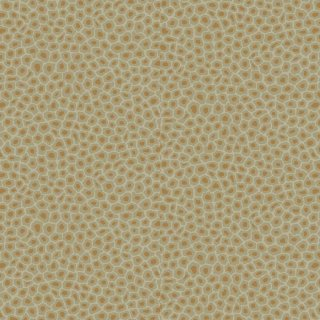 Senzo Spot / 109/6029 / The Ardmore Collection / Cole&Son