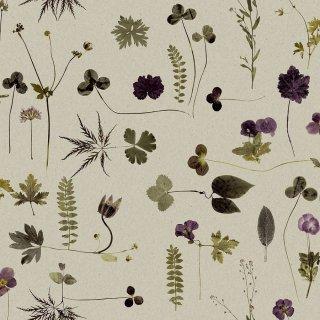 Botanica / 3661 / Simplicity / Engblad&Co.