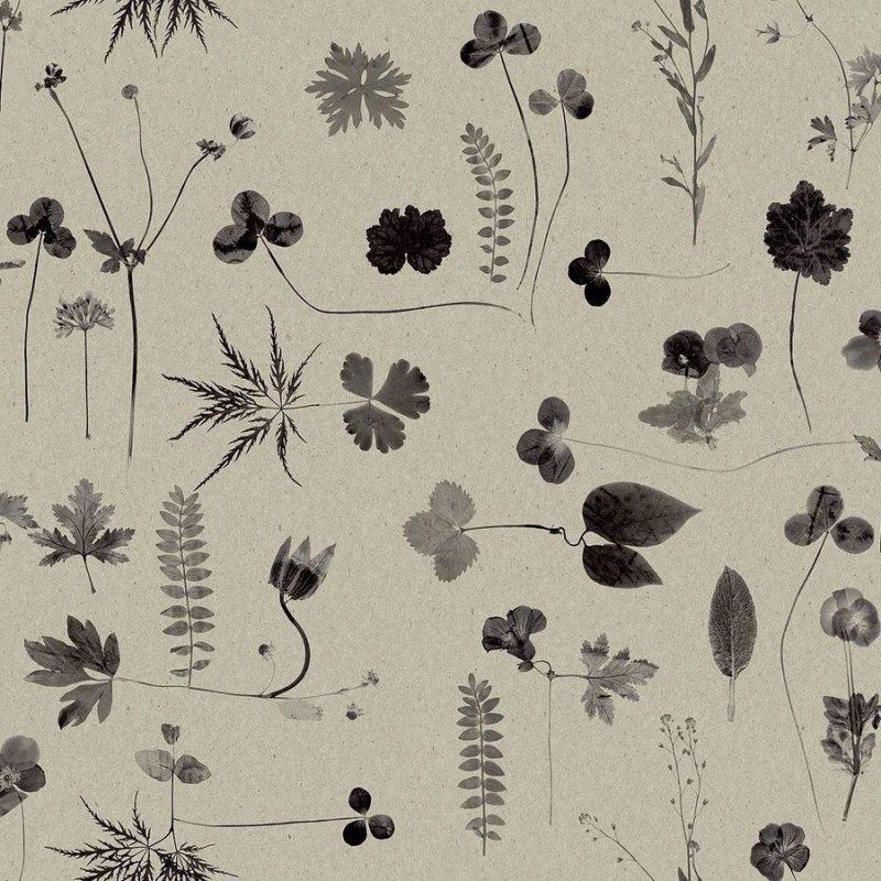 Botanica / 3662 / Simplicity / Engblad&Co.