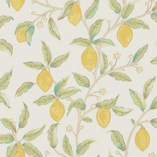 Lemon Tree / 216672 / Morris Archive V - Melsetter wallpapers / Morris&Co.