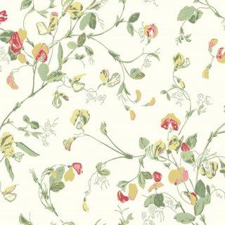 Sweet Pea / 100/6027 / Botanical Botanica / Cole&Son