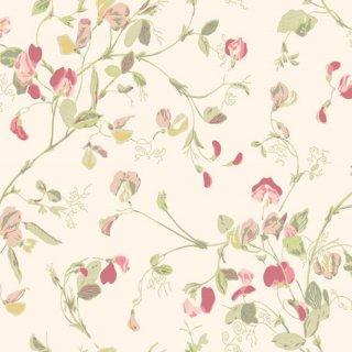 Sweet Pea / 100/6028 / Botanical Botanica / Cole&Son
