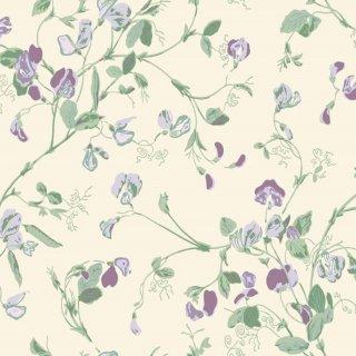 Sweet Pea / 100/6030 / Botanical Botanica / Cole&Son