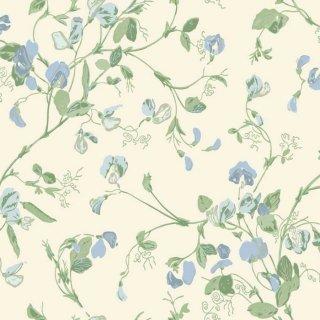 Sweet Pea / 100/6031 / Botanical Botanica / Cole&Son