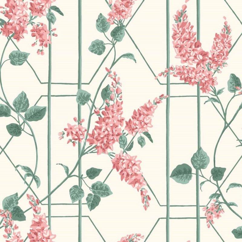 Wisteria / 115/5012 / Botanical Botanica / Cole&Son