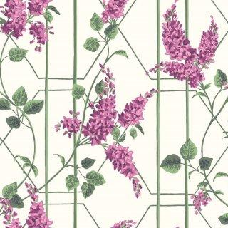 Wisteria / 115/5013 / Botanical Botanica / Cole&Son