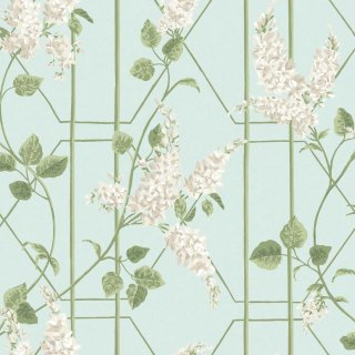 Wisteria / 115/5014 / Botanical Botanica / Cole&Son