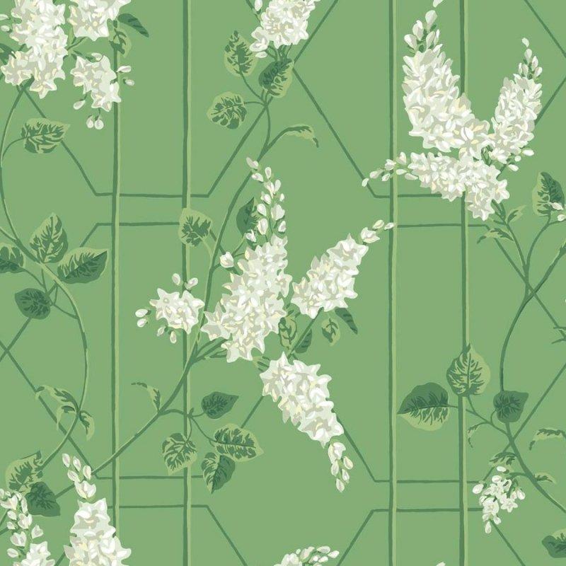 Wisteria / 115/5016 / Botanical Botanica / Cole&Son