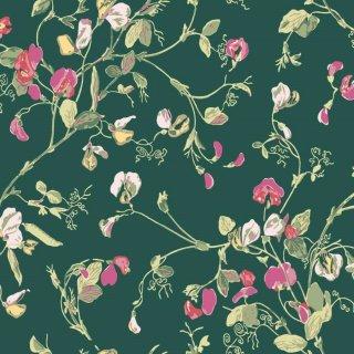 Sweet Pea / 115/11033 / Botanical Botanica / Cole&Son