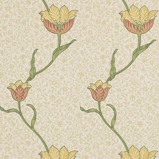 Garden Tulip / 210392 / Morris Archive I / Morris&Co.