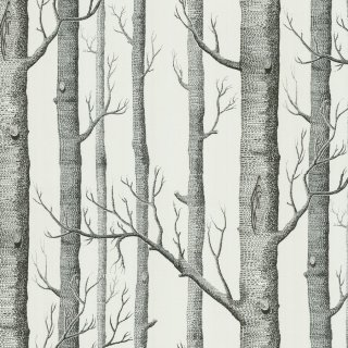 Woods / 69/12147 / The Contemporary Collection / Cole&Son