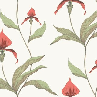 Orchid / 95/10054 / The Contemporary Collection / Cole&Son