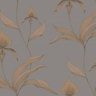 Orchid / 95/10056 / The Contemporary Collection / Cole&Son