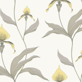 Orchid / 95/10057 / The Contemporary Collection / Cole&Son