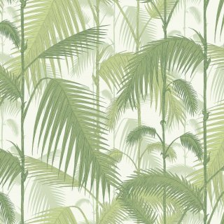 Palm Jungle / 95/1001 / The Contemporary Collection / Cole&Son