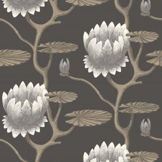Summer Lily / 95/4026 / The Contemporary Collection / Cole&Son