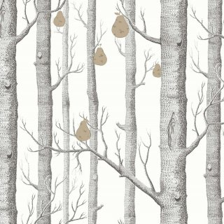 Woods & Pears / 95/5027 / The Contemporary Collection / Cole&Son