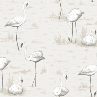 Flamingos / 95/8046 / The Contemporary Collection / Cole&Son