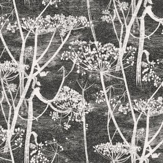 Cow Parsley / 66/7046 / The Contemporary Collection / Cole&Son