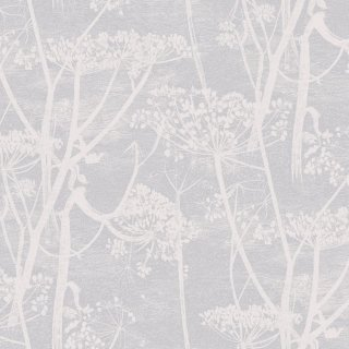 Cow Parsley / 95/9049 / The Contemporary Collection / Cole&Son