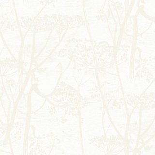 Cow Parsley / 95/9052 / The Contemporary Collection / Cole&Son
