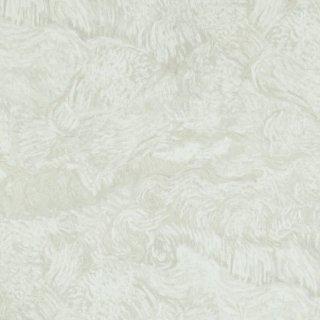 17172 / Van Gogh / BN Wallcoverings