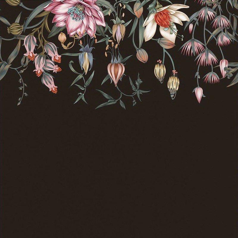 Canopy / LA-019 / Lisel Jane Ashlock / Hygge & West
