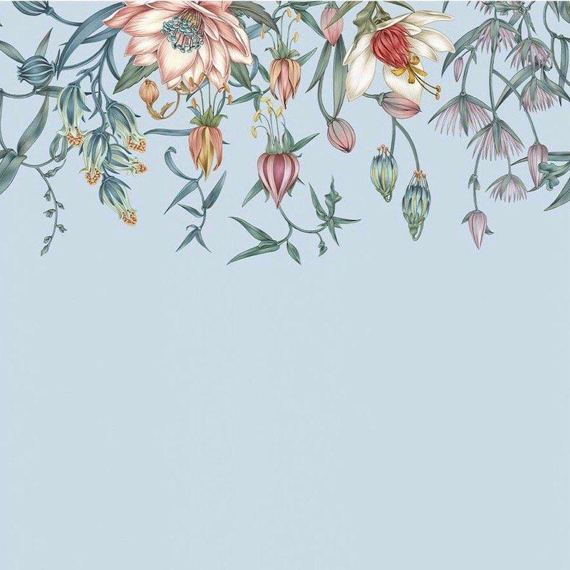 Canopy / LA-021 / Lisel Jane Ashlock / Hygge & West
