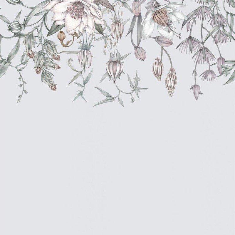 Canopy / LA-022 / Lisel Jane Ashlock / Hygge & West