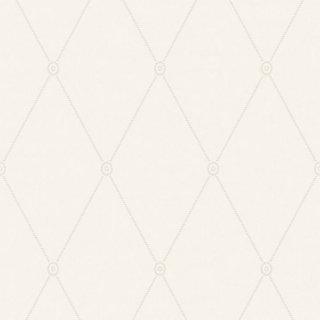 Large Georgian Rope Trellis  / 100/13060 / Archive Anthology / Cole&Son