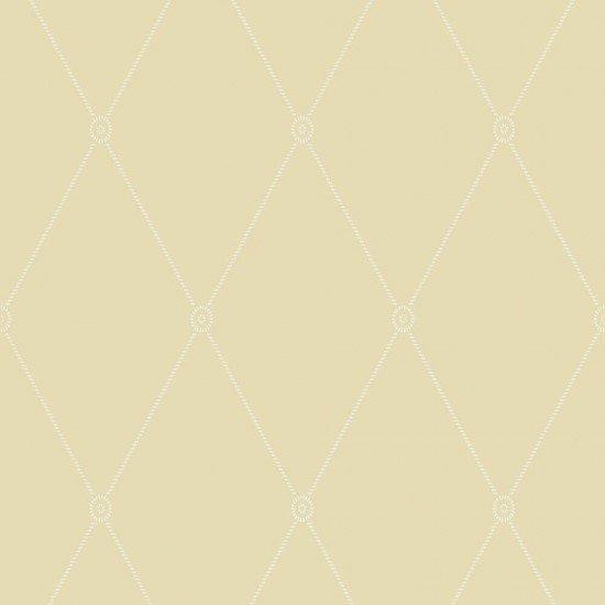 Large Georgian Rope Trellis  / 100/13063 / Archive Anthology / Cole&Son