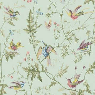 Hummingbirds / 100/14069 / Archive Anthology / Cole&Son