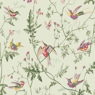 Hummingbirds / 100/14070 / Archive Anthology / Cole&Son