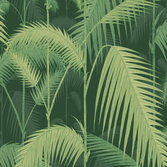 Palm Jungle / 112/1003 / Icons / Cole&Son