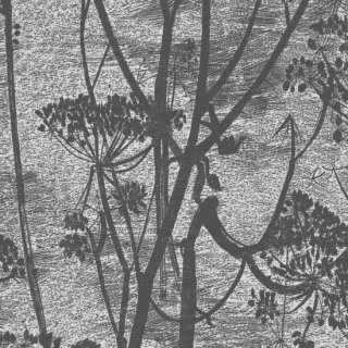 Cow Parsley 1 / 112/8026 / Icons / Cole&Son