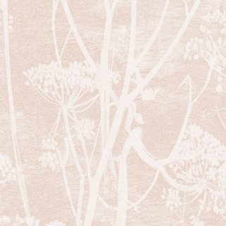 Cow Parsley 1 / 112/8028 / Icons / Cole&Son