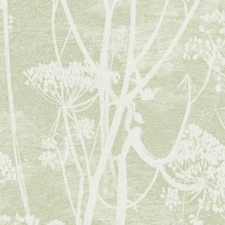 Cow Parsley 1 / 112/8029 / Icons / Cole&Son