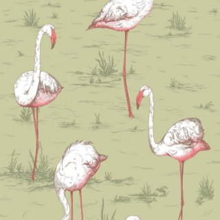 Flamingos / 112/11038 / Icons / Cole&Son