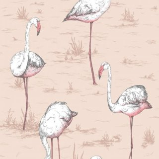 Flamingos / 112/11039 / Icons / Cole&Son