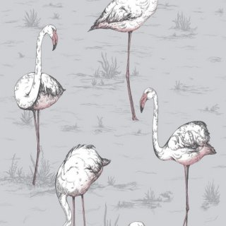 Flamingos / 112/11040 / Icons / Cole&Son