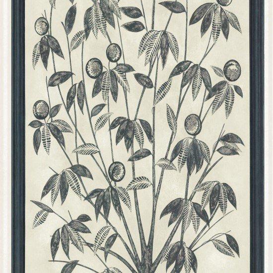 Trees of Eden LIFE / 113/14043 / Martyn Lawrence Bullard / Cole&Son