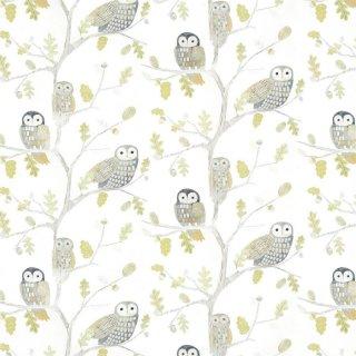 Little Owls / 112627 / Book Of Little Treasures / Harlequin